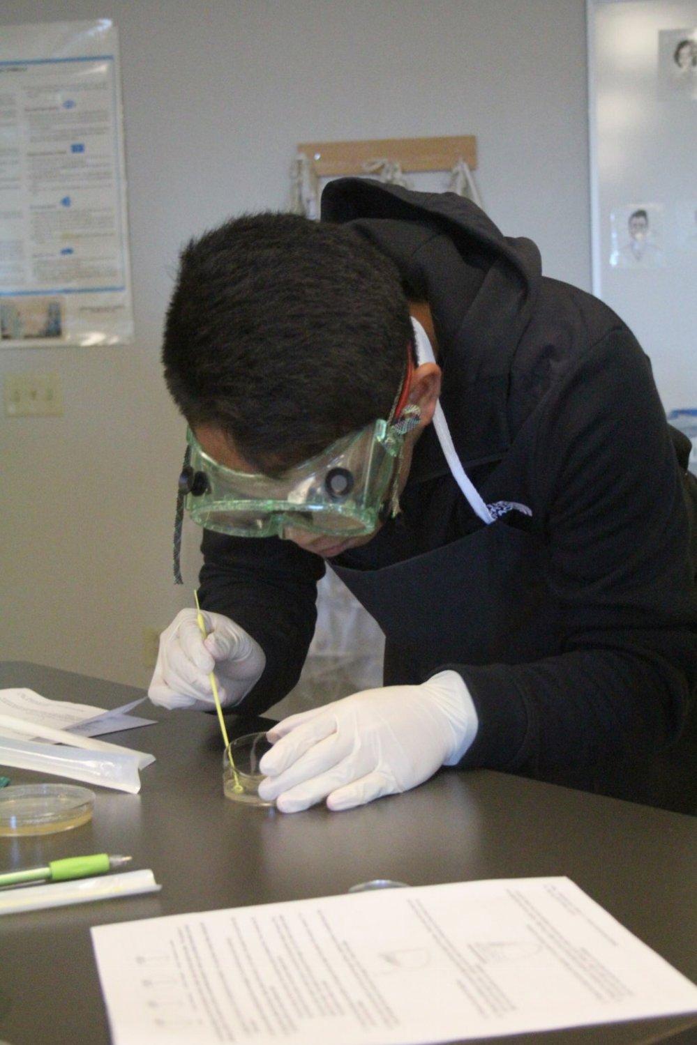 MI Lab 6