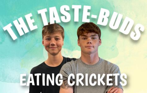 Taste-Buds - Eating Crickets (S2E1)