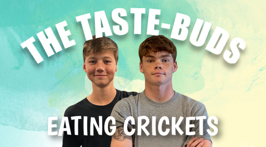 Taste-Buds - Eating Crickets (S2E1)